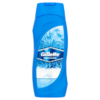 Gillette Endurance Arctic Ice Shower Gel 250ml