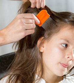 Head Lice & Scabies